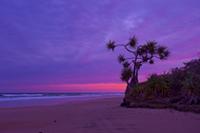 75 Mile Beach_a_DSC_2705_1_200